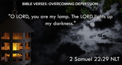 2 Samuel 22:29 NLT