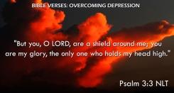 Psalm 3:3 NLT