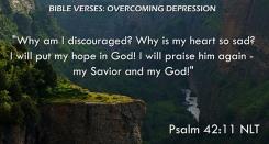 Psalm 42:11 NLT